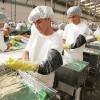 Ilo e Ica muestran evolución positiva en generación de empleos de calidad