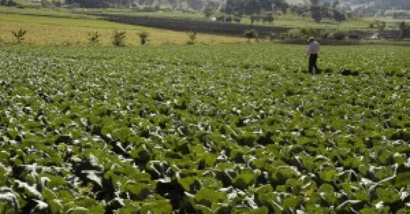 Perú al 2030: Conversatorio sobre el futuro de la agricultura