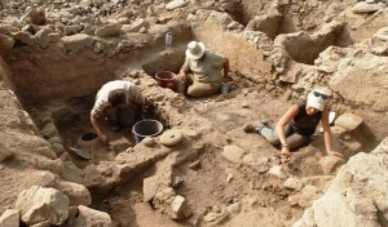 """Mesa verde: """"Estudios arqueobótanicos en Panquilma: resultados preliminares"""""""