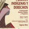 Foro sobre educación superior de los pueblos indígenas y su participación política