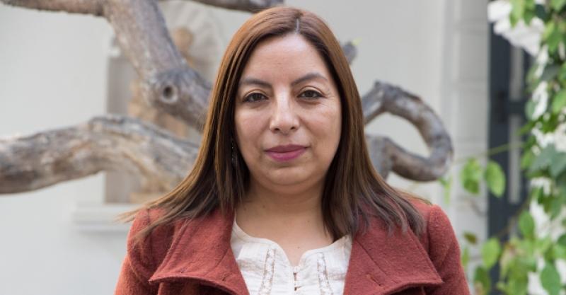 Hildegardi Venero asesora la elaboración de la Línea de Base del Objetivo de Desarrollo Sostenible de Agua y Saneamiento en Perú, México y Argentina