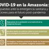 IEP organizó ciclo temático sobre la respuesta sanitaria de la Amazonía frente a la pandemia